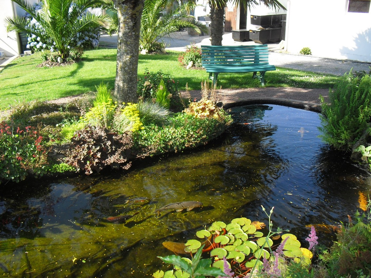 Bassin de jardin for Bache de bassin aquatique