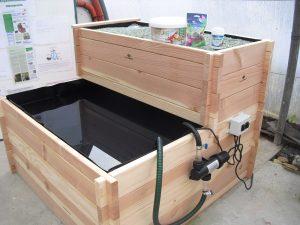 le bassin-potager aquaponique