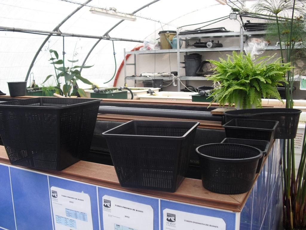 Paniers et terreau pour les plantes aquatiques du bassin for Site de vente de plantes