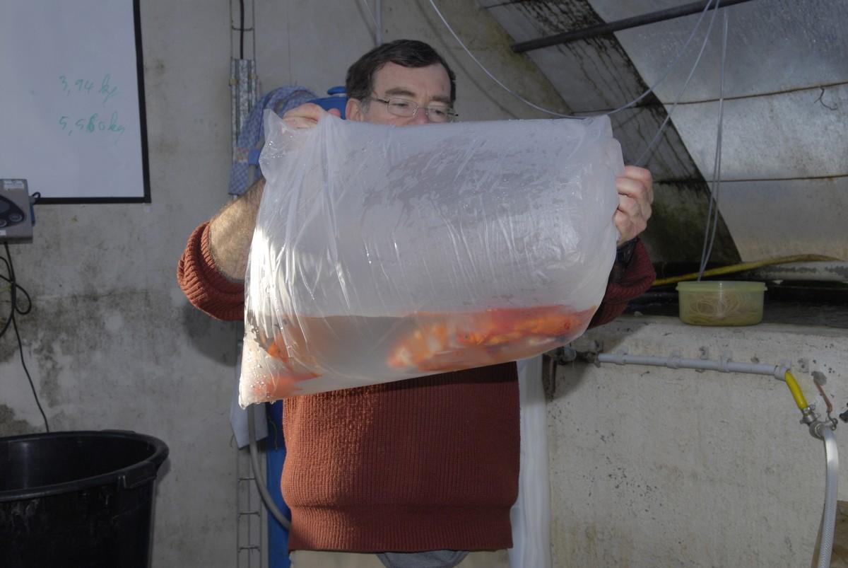 Transport de vos poissons